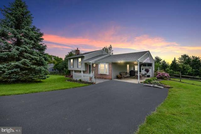 6006 Quinn Orchard Road, FREDERICK, MD 21704 (#MDFR246730) :: ExecuHome Realty