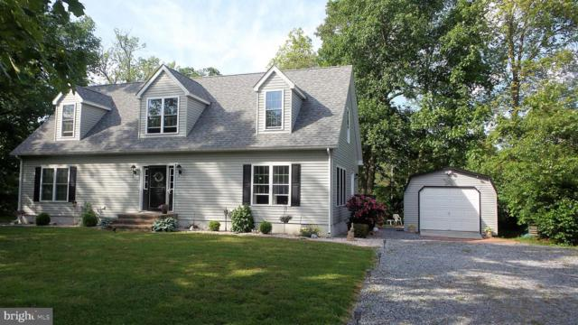 10757 Patriot Court, LINCOLN, DE 19960 (#DESU140658) :: CoastLine Realty