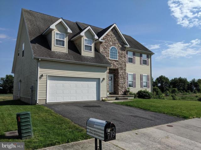719 Dairy Drive, MIDDLETOWN, DE 19709 (#DENC478622) :: The Team Sordelet Realty Group
