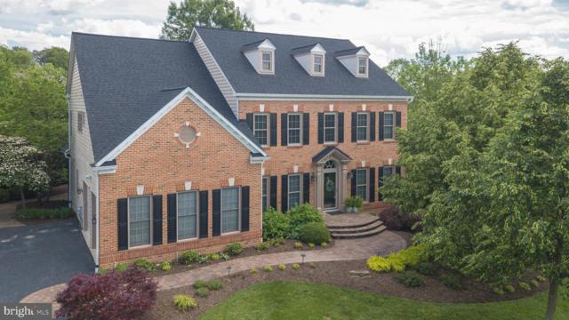 6609 Mackenzie Place, IJAMSVILLE, MD 21754 (#MDFR246754) :: ExecuHome Realty