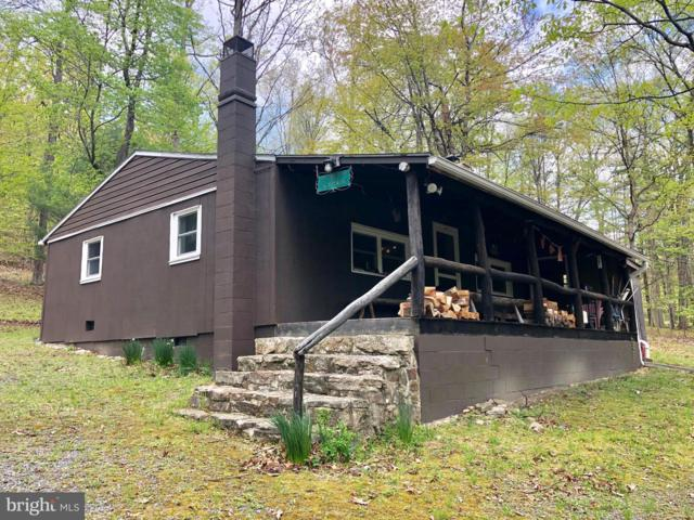 252 Peffer Trail, MCCONNELLSBURG, PA 17233 (#PAFU104104) :: ExecuHome Realty