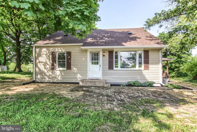 810 New Bloomfield Road, DUNCANNON, PA 17020 (#PAPY100868) :: The Joy Daniels Real Estate Group