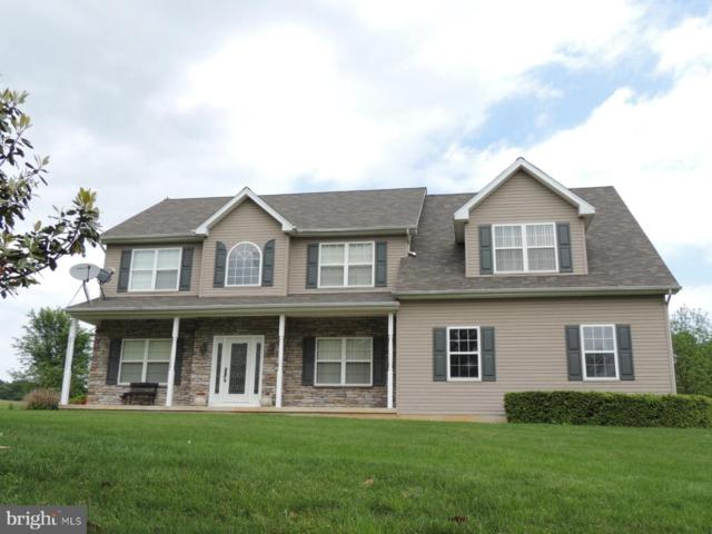 380 Sky View Road, ELKTON, MD 21921 (#MDCC164240) :: The Miller Team