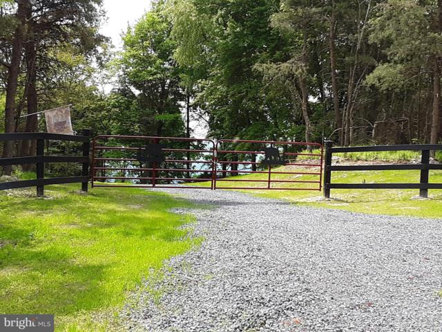 LOT 50 Baker Mountain Drive, YELLOW SPRING, WV 26865 (#WVHS112600) :: The Miller Team