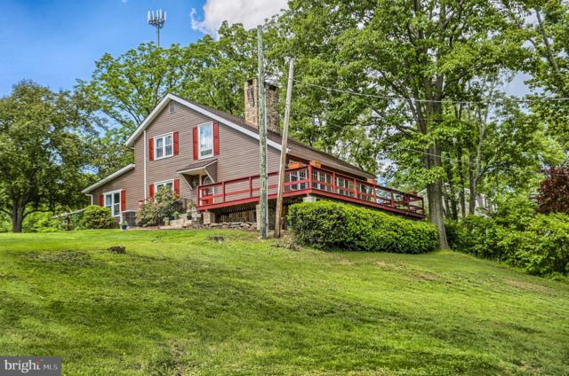133 Old Cabin Hollow Road, DILLSBURG, PA 17019 (#PAYK117140) :: The Knox Bowermaster Team
