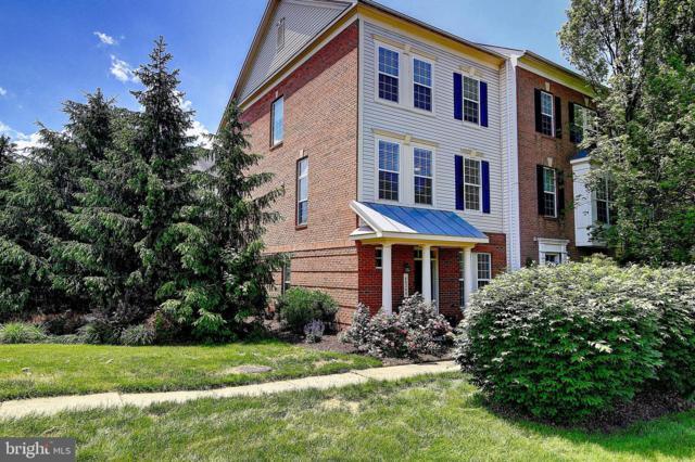 46246 Milthorn Terrace, STERLING, VA 20165 (#VALO384554) :: Advon Real Estate