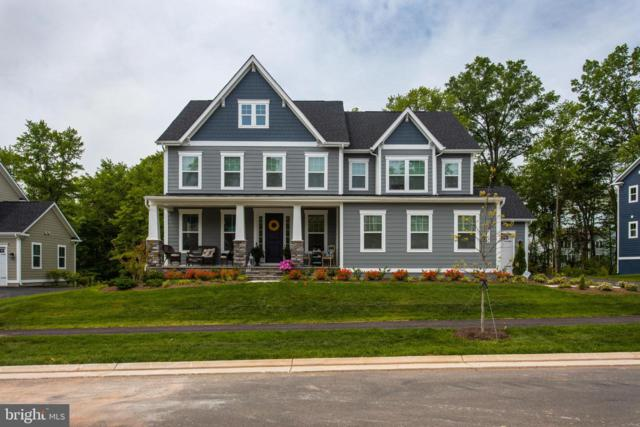 41175 Chatham Green Circle, ALDIE, VA 20105 (#VALO384558) :: The Piano Home Group