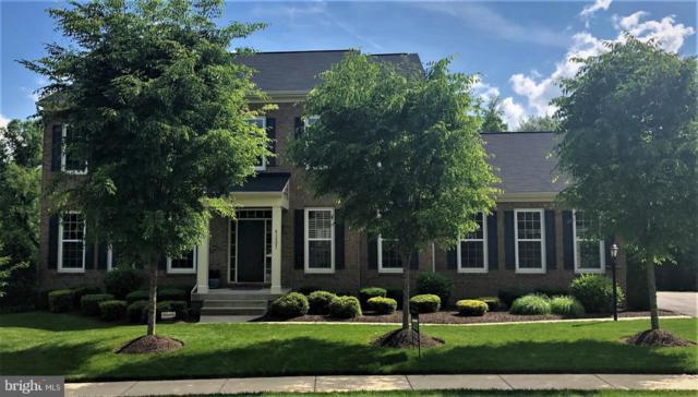 41521 Goshen Ridge Place, ALDIE, VA 20105 (#VALO384564) :: Pearson Smith Realty