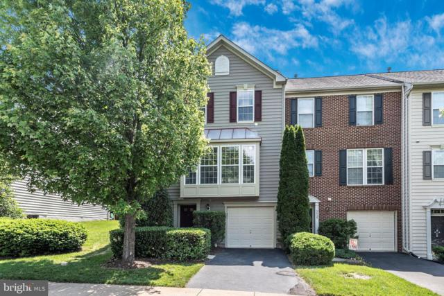 3630 Singleton Terrace, FREDERICK, MD 21704 (#MDFR246810) :: The Sebeck Team of RE/MAX Preferred