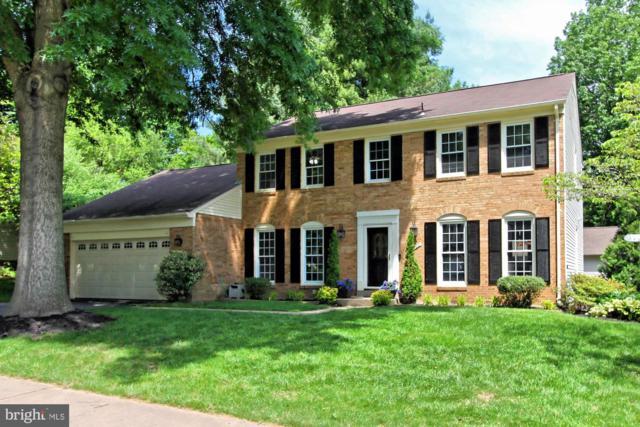 6220 Wilmette Drive, BURKE, VA 22015 (#VAFX1063652) :: Generation Homes Group