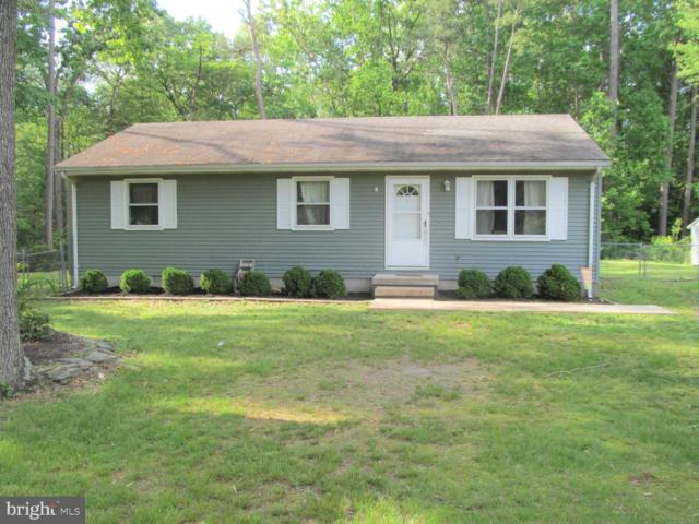 30442 Cannon Drive, SALISBURY, MD 21804 (#MDWC103406) :: Barrows and Associates