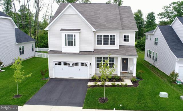 205 Upper Heyford Place, PURCELLVILLE, VA 20132 (#VALO384614) :: EXP Realty