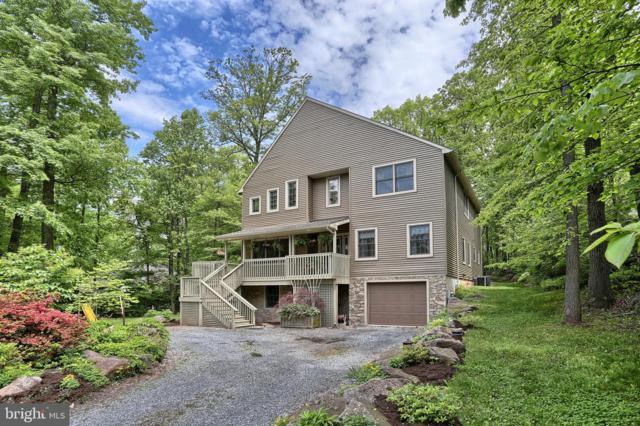 142 Timber Lane, MT GRETNA, PA 17064 (#PALN107058) :: The Craig Hartranft Team, Berkshire Hathaway Homesale Realty