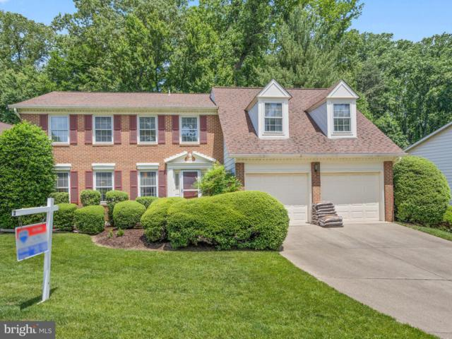 10167 Red Spruce Road, FAIRFAX, VA 22032 (#VAFX1063766) :: ExecuHome Realty