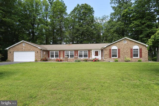 4196 Windy Hill Drive, MONROVIA, MD 21770 (#MDFR246860) :: Pearson Smith Realty