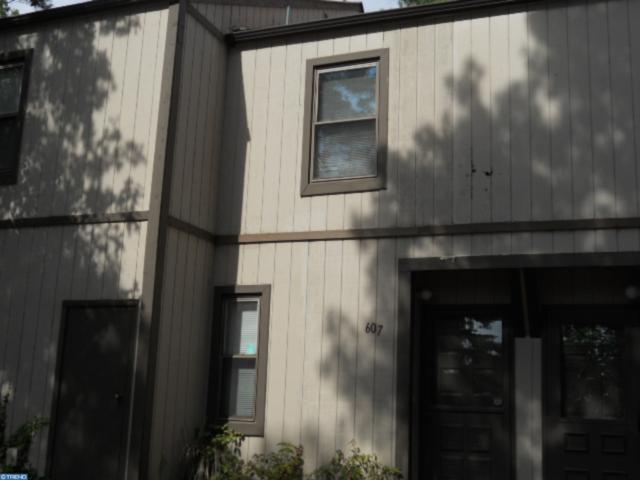 607 Bromley Estate, PINE HILL, NJ 08021 (MLS #NJCD366250) :: The Dekanski Home Selling Team