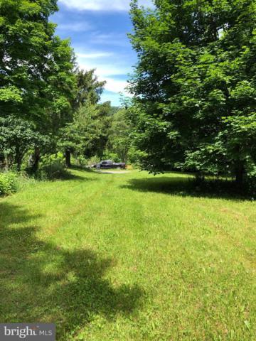 Berryville Drive, BERKELEY SPRINGS, WV 25411 (#WVMO115348) :: The Sky Group