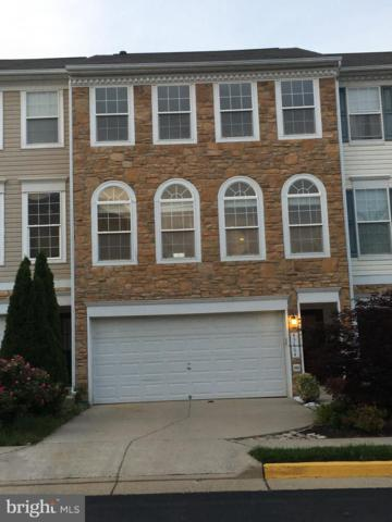 43664 Saint Helena Terrace, ASHBURN, VA 20147 (#VALO384712) :: The Miller Team
