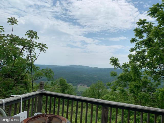 Skyview Drive, ROMNEY, WV 26757 (#WVHS112616) :: Arlington Realty, Inc.