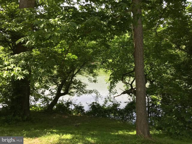 Riverview Shores Drive, FRONT ROYAL, VA 22630 (#VAWR136856) :: Bob Lucido Team of Keller Williams Integrity