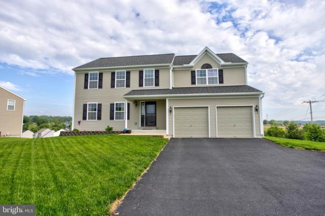 2 Waterfowl Way, ELIZABETHTOWN, PA 17022 (#PALA133096) :: The Joy Daniels Real Estate Group
