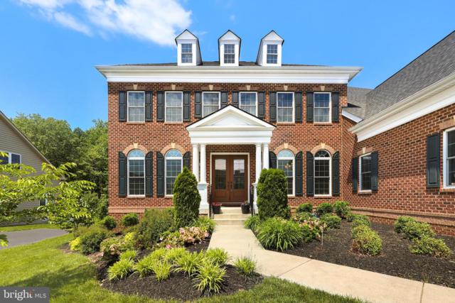42387 Fawn Meadow Place, CHANTILLY, VA 20152 (#VALO384774) :: The Piano Home Group