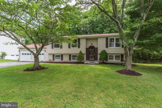 1300 Windmill Lane, SILVER SPRING, MD 20905 (#MDMC660130) :: The Gold Standard Group