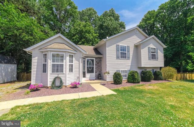 38990 Lupes Court, MECHANICSVILLE, MD 20659 (#MDSM162206) :: Keller Williams Pat Hiban Real Estate Group