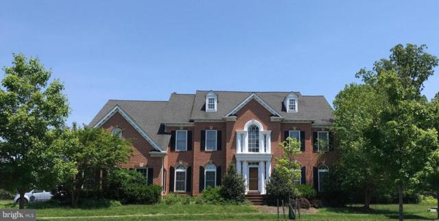 11221 Greenbriar Preserve Lane, POTOMAC, MD 20854 (#MDMC660164) :: The Speicher Group of Long & Foster Real Estate