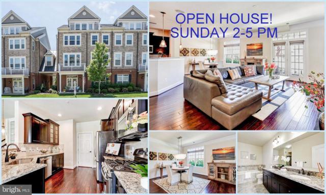42614 Hardage Terrace, ASHBURN, VA 20148 (#VALO384818) :: Colgan Real Estate