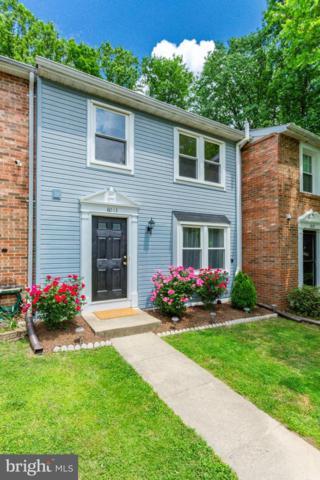 8013 Steeple Chase Court, SPRINGFIELD, VA 22153 (#VAFX1064132) :: Advon Real Estate