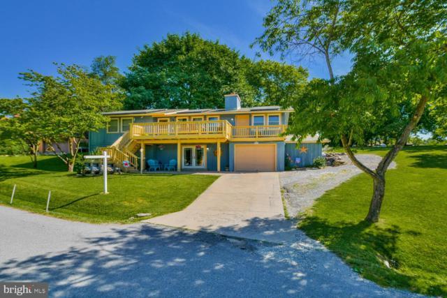 6581 Nyasa Bend Rd, NEW MARKET, MD 21774 (#MDFR246922) :: Jim Bass Group of Real Estate Teams, LLC