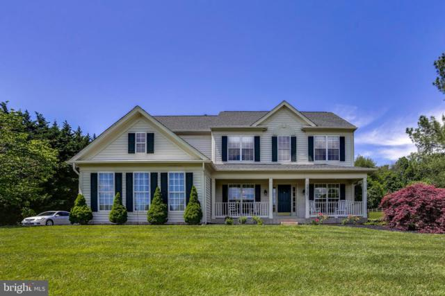 1717 Cattail Woods Lane, WOODBINE, MD 21797 (#MDHW264236) :: Charis Realty Group
