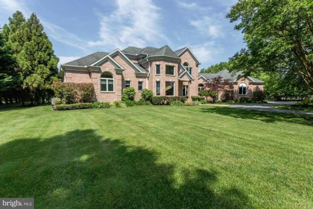 224 Shipping Creek Drive, STEVENSVILLE, MD 21666 (#MDQA140022) :: SURE Sales Group