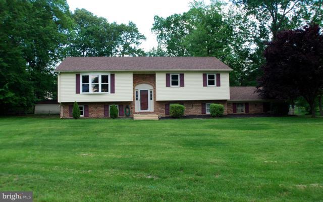 14 Debra Drive, BEAR, DE 19701 (#DENC478882) :: Keller Williams Real Estate