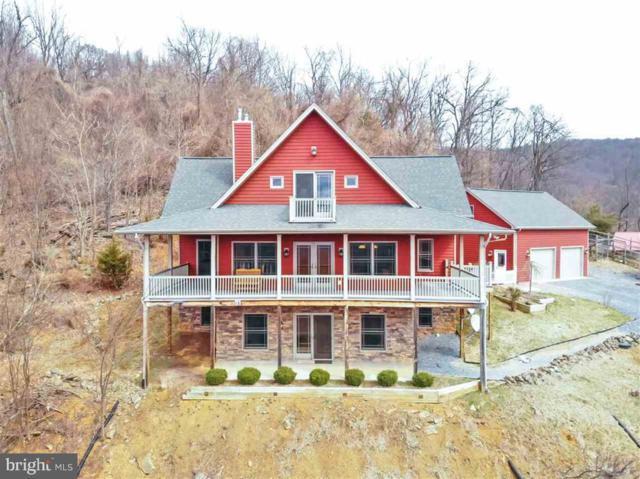 22648 Forest Homes Drive, ELKTON, VA 22827 (#VARO100836) :: Browning Homes Group