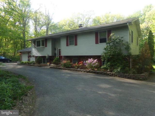 186 High Point Drive, KUNKLETOWN, PA 18058 (#PAMR104476) :: ExecuHome Realty