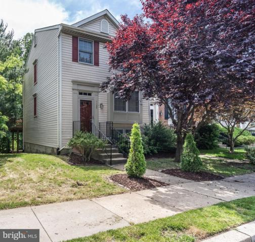 1125 Double Chestnut Court, CHESTNUT HILL COVE, MD 21226 (#MDAA400848) :: ExecuHome Realty