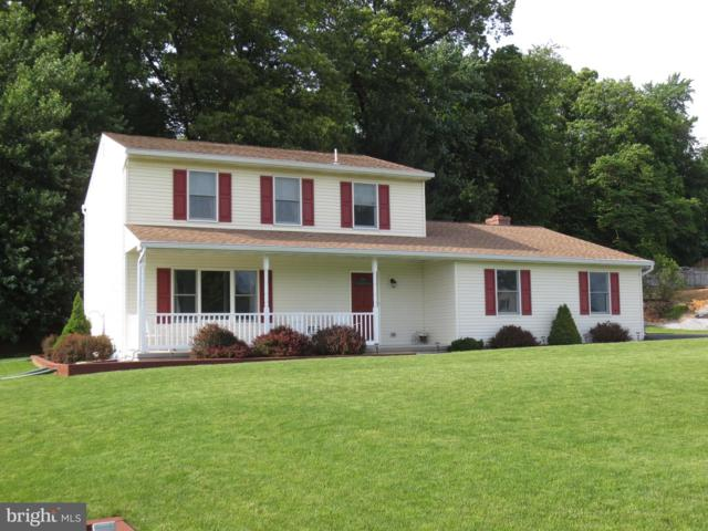 111 Valerie Drive, ELIZABETHTOWN, PA 17022 (#PALA133140) :: ExecuHome Realty