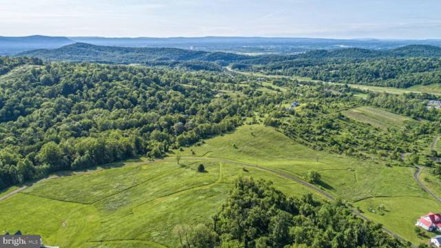 Lot 11 Winona Drive, LINDEN, VA 22642 (#VAWR136884) :: The Sky Group