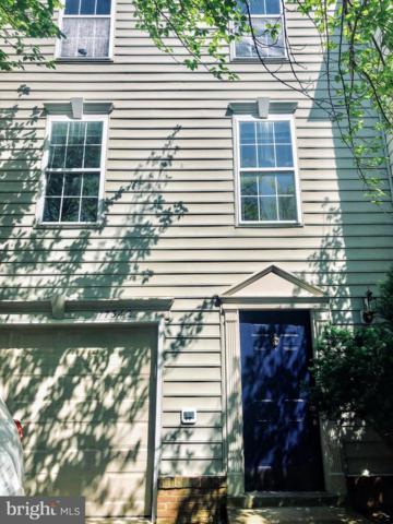 17342 Legacy Terrace, ROUND HILL, VA 20141 (#VALO384892) :: EXP Realty
