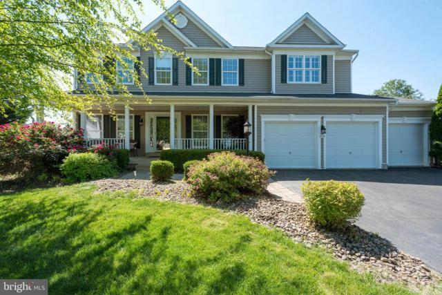 424 Falls Chapel Court, PURCELLVILLE, VA 20132 (#VALO384910) :: EXP Realty