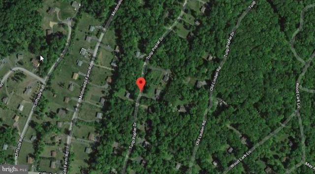 Tulip Poplar Drive, LINDEN, VA 22642 (#VAWR136894) :: The Sky Group