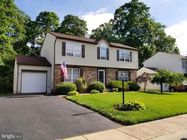141 Independence Drive, ELKTON, MD 21921 (#MDCC164308) :: Browning Homes Group