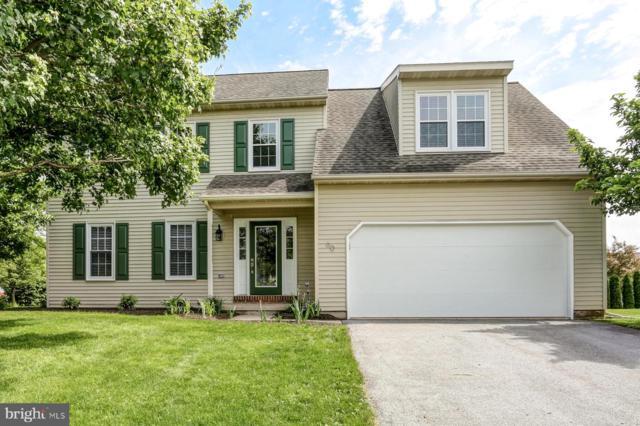 60 Pheasant Lane, REINHOLDS, PA 17569 (#PALA133180) :: John Smith Real Estate Group