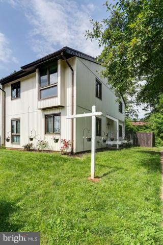 229 Willow Terrace, STERLING, VA 20164 (#VALO384944) :: EXP Realty