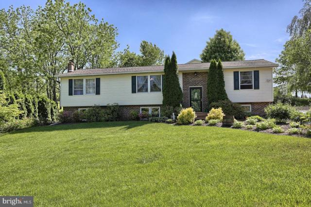 1247 Running Deer Drive, AUBURN, PA 17922 (#PASK125984) :: Ramus Realty Group