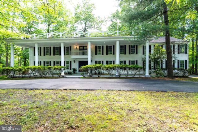 11109 Richland Valley Drive, GREAT FALLS, VA 22066 (#VAFX1064546) :: The Piano Home Group