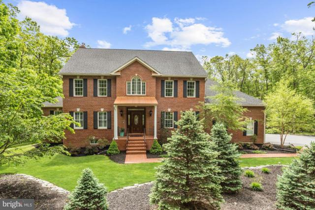 10305 Gambrill Park Road, FREDERICK, MD 21702 (#MDFR247032) :: ExecuHome Realty