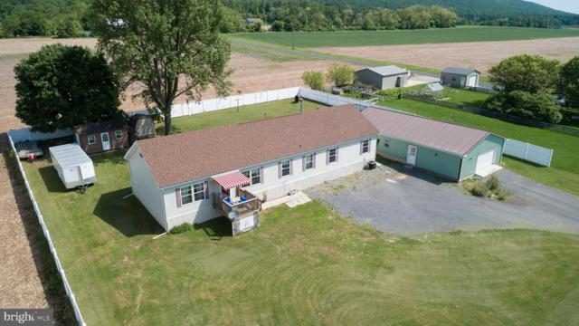 138 W Mountain Road, HEGINS, PA 17938 (#PASK125992) :: Ramus Realty Group